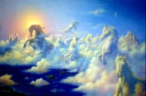 cavalli nuvole