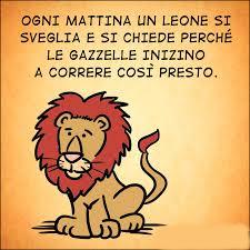 leone e gazzella